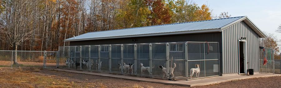 Dog kennel to build care for training dogs kennel for Building a dog kennel business