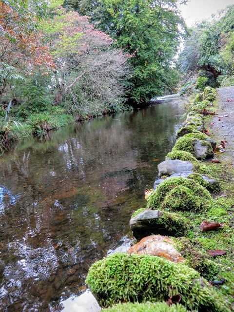 River running through Mount Usher Gardens in County Wicklow