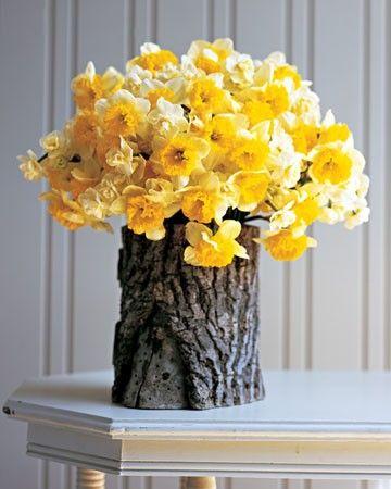 daffodils in a rustic wood vase