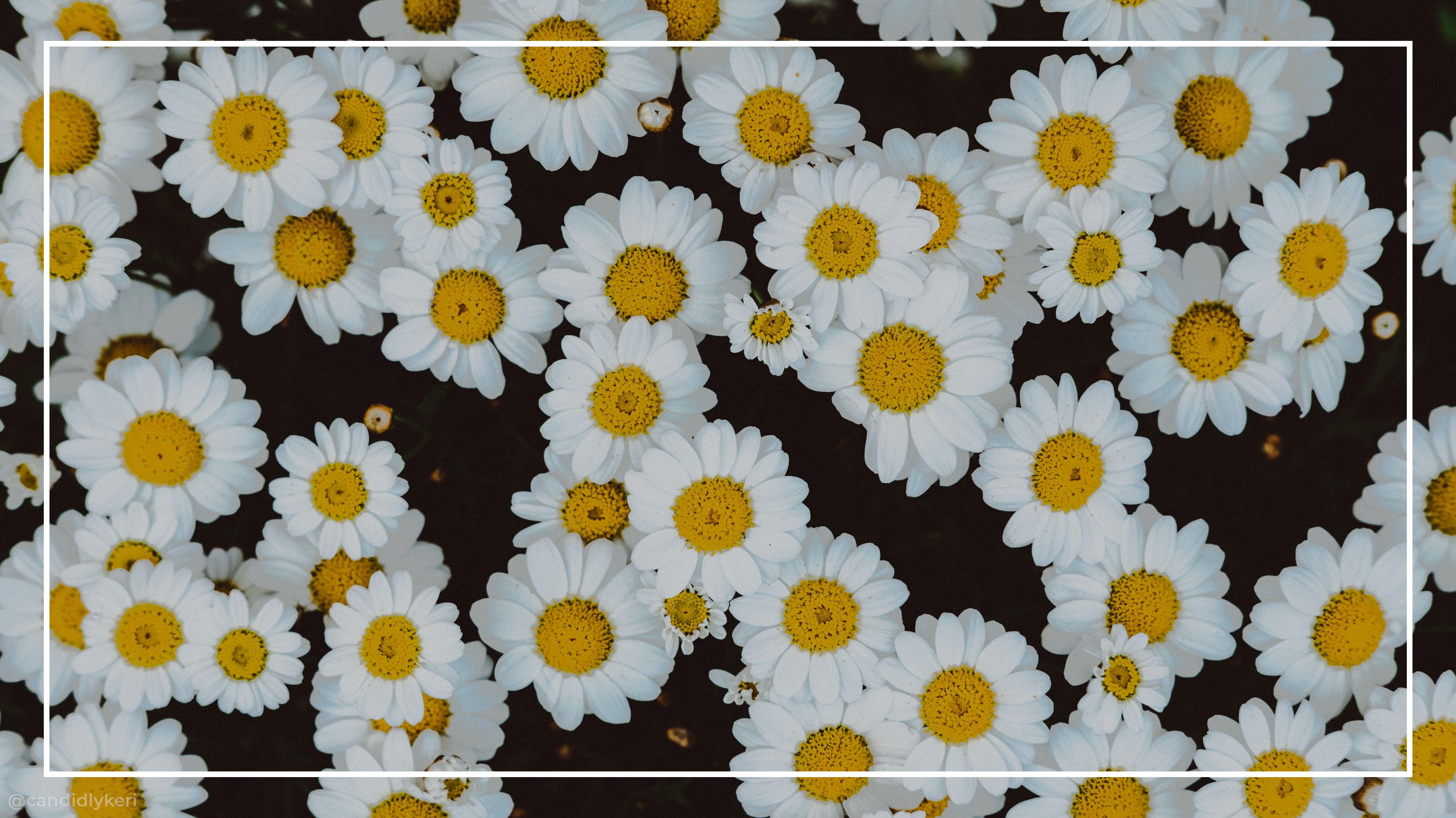 idea by on 12 aesthetic desktop wallpaper laptop