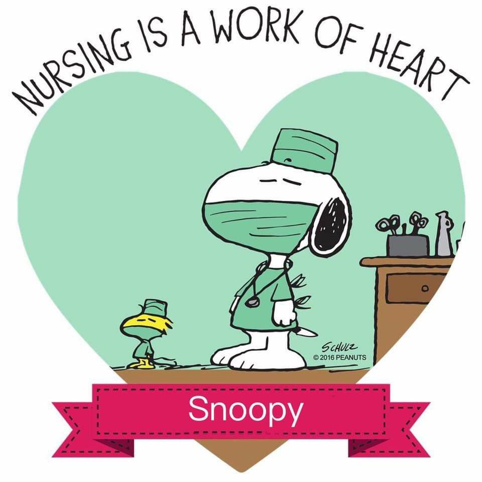Today is National Nurses Day. Snoopy, Snoopy pictures