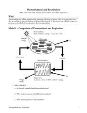Photosynthesis And Respiration Pogil Answers | Perf. | Pinterest ...