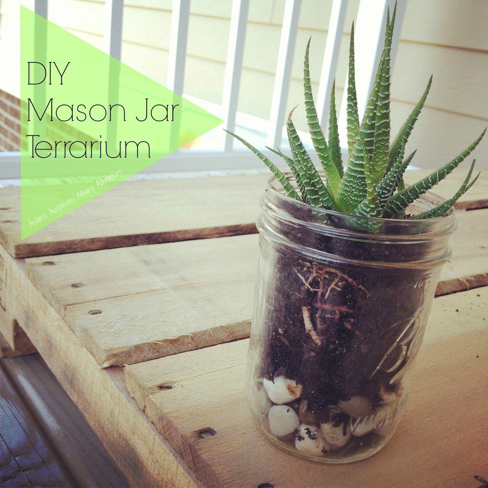 An Auspicious Adventure Diy Mason Jar Terrarium