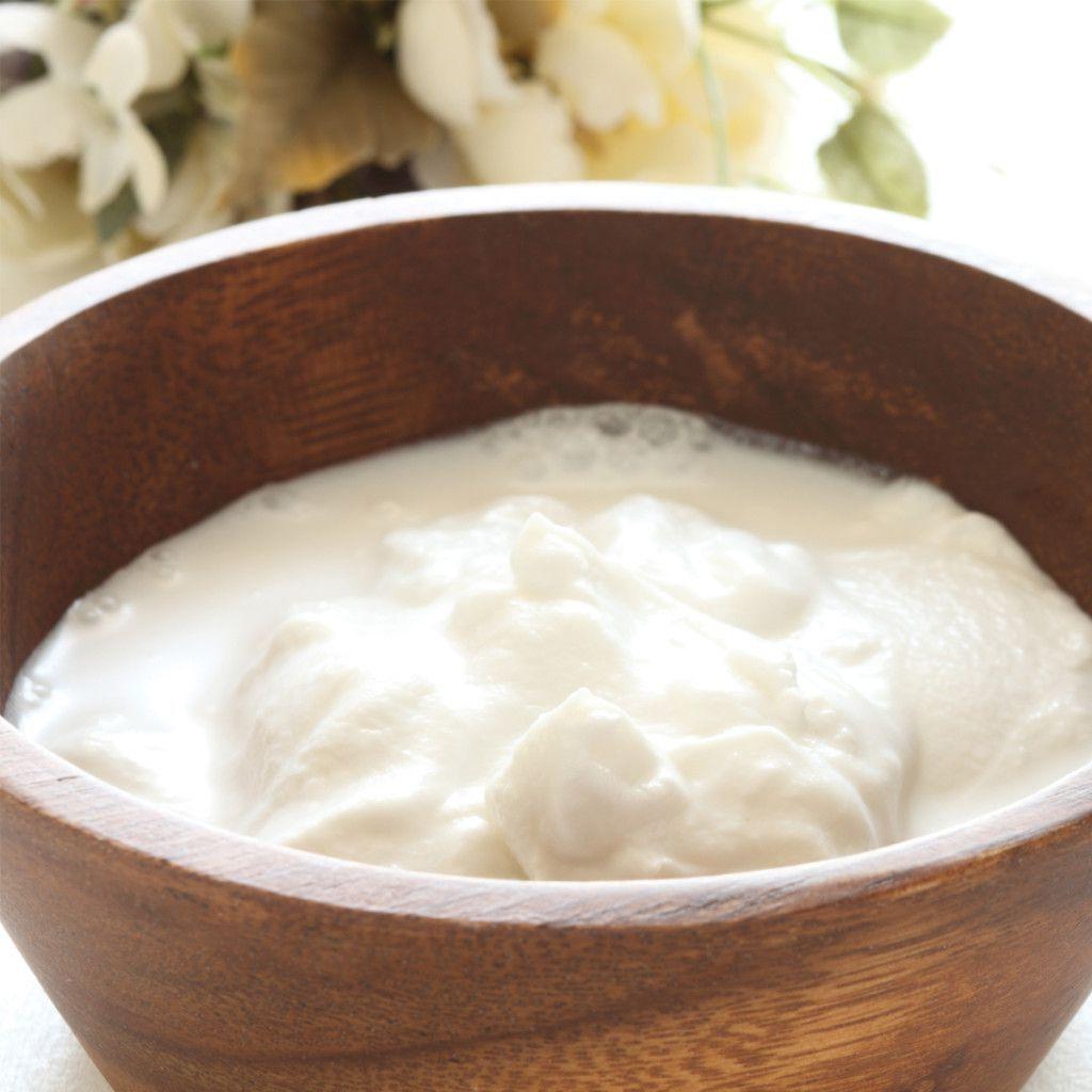 How To Make Dairy Free Coconut Yogurt Recipe Yogurt Recipes