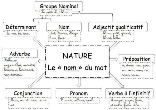 carte mentale nature des mots Français   GRAMMAIRE   carte mentale : la nature des mots (avec