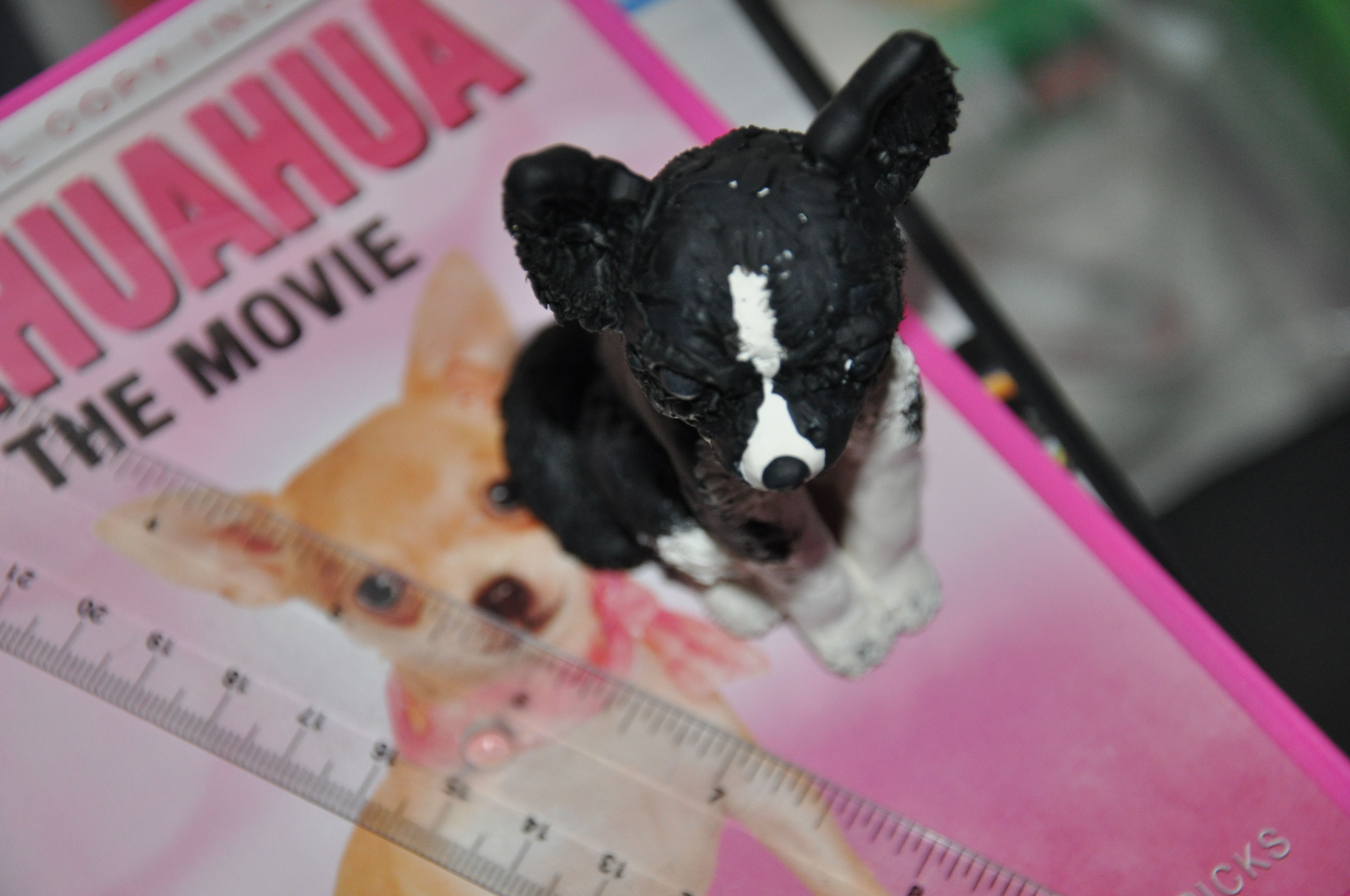 A Piece I Did In Sculpty Central Florida Orlando Florida Chihuahua