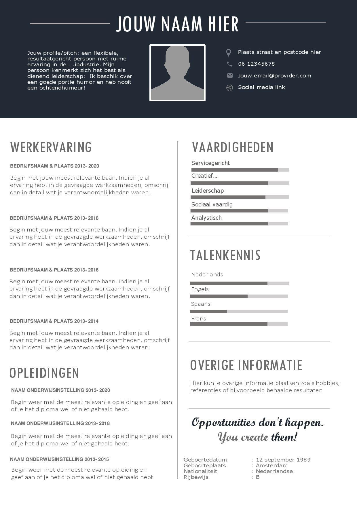 format voor cv CV template voor een perfecte indruk   inclusief gratis passend