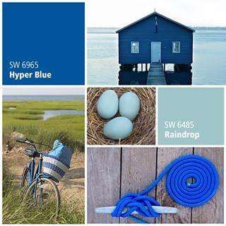 Hyper Blue Sw 6965 Blue Paint Color Sherwin Williams Blue Paint Colors Cobalt Blue Paint Sherwin Williams Paint Colors