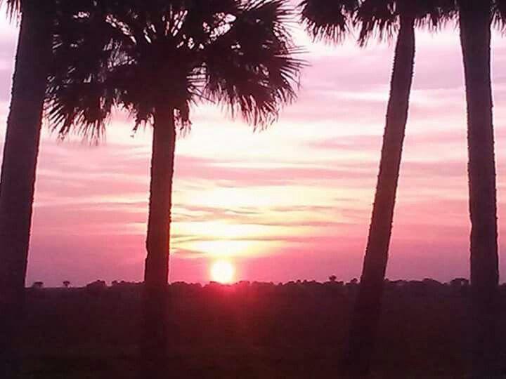 Florida Sunset Photo taken by J.Hemingway