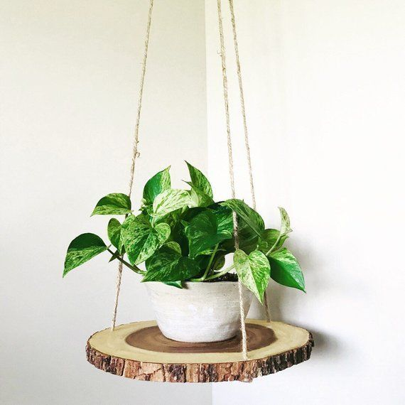 Wood slab slice floating hanging planter shelf table | Etsy
