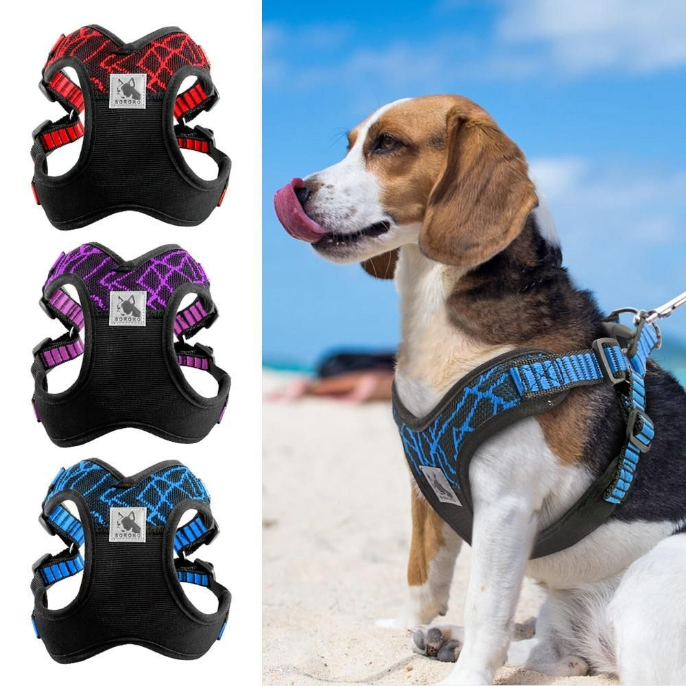 Neoprene Padded Safety Dog Harness Dog Harness Dog Safety