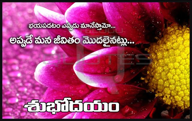 Telugu subodyam greetings pictures top good morning wishes images telugu subodyam greetings pictures top good morning wishes images telugu quotes for whatsapp m4hsunfo