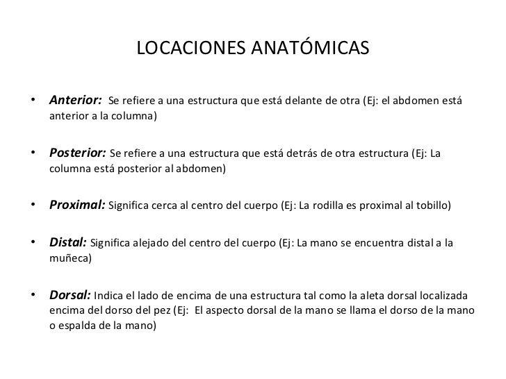 LOCACIONES ANATÓMICAS <ul><li>Anterior: Se refiere a una estructura ...