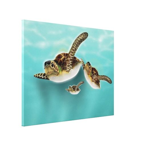 Sea Turtles Illustration Canvas Prints