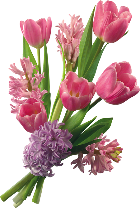 Tulip bouquet png Bouquet de tulipes, Fleurs, Tulipe