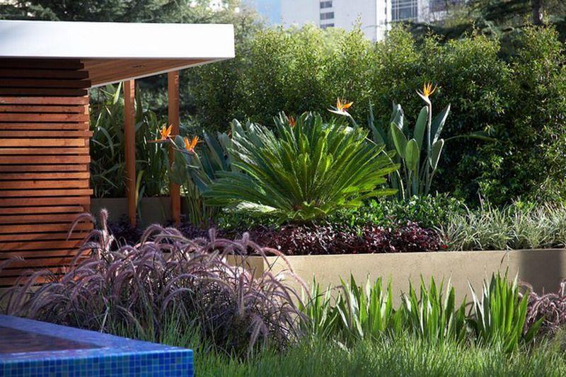 Garden Design Ideas Melbourne Beautiful contemporary melbourne garden patio landscape planting beautiful contemporary melbourne garden patio landscape workwithnaturefo