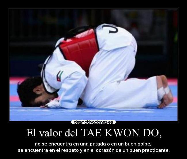Respeto Taekwondo Taekwondo Itf Karate Kid