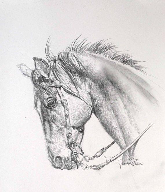 Horse Study by JamesSkilesArt on Etsy, $175.00