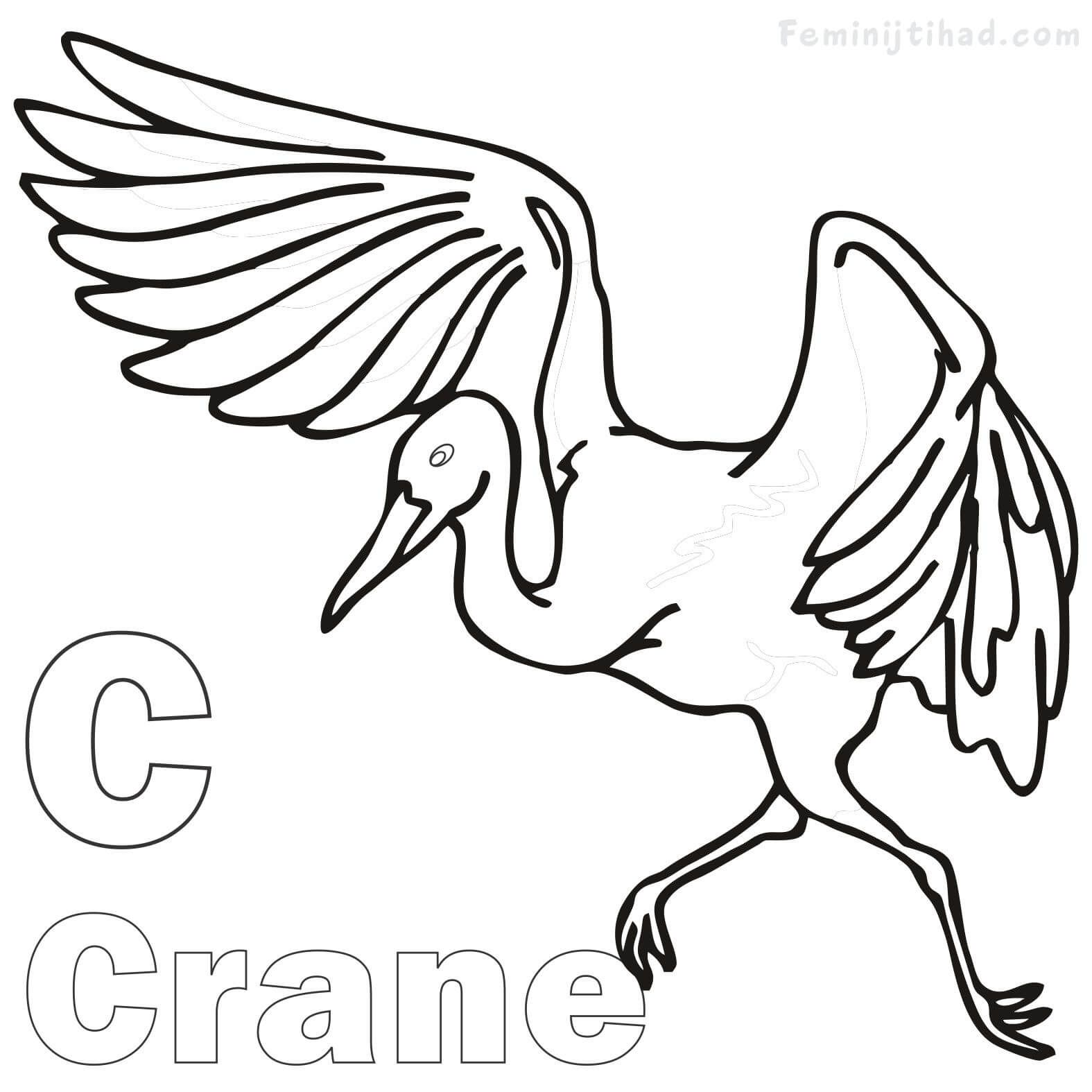 Letter C For Crane Coloring Pages For Kids Animal Coloring Pages