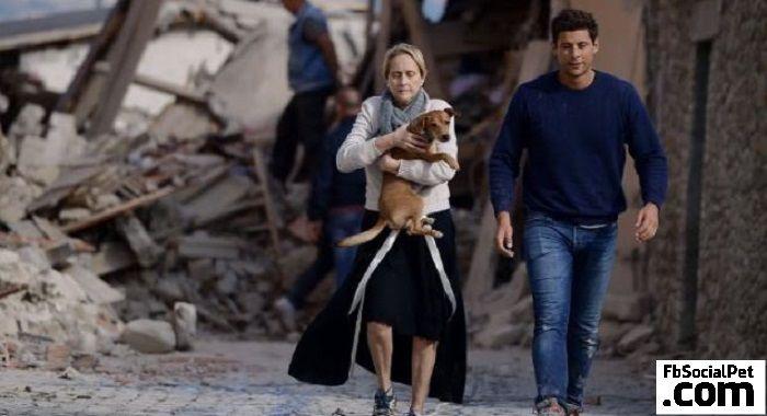 Terremoto: molte strutture accoglienza rifiutano animali domestici #Iloveanimals #Ilovepets #FbSocialPet #AnimaliTerremoto