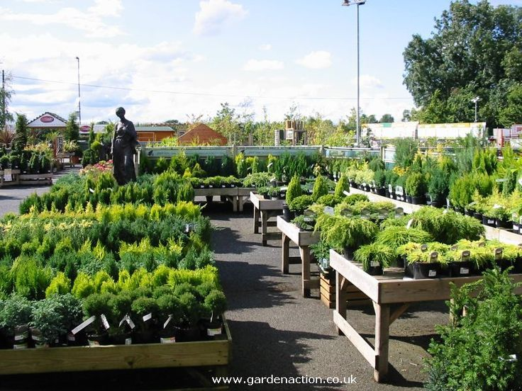 Image Result For Plant Nursery Layout