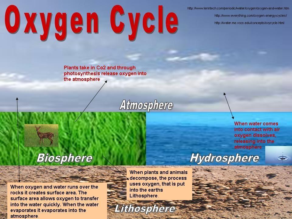 Hydrosphere, biosphere, atmosphere, lithosphere   Science