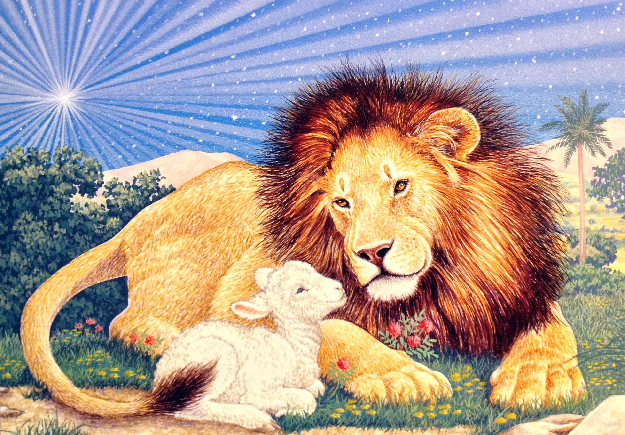 Lion & Lamb Christmas card by Colorful Images. Inside message ...