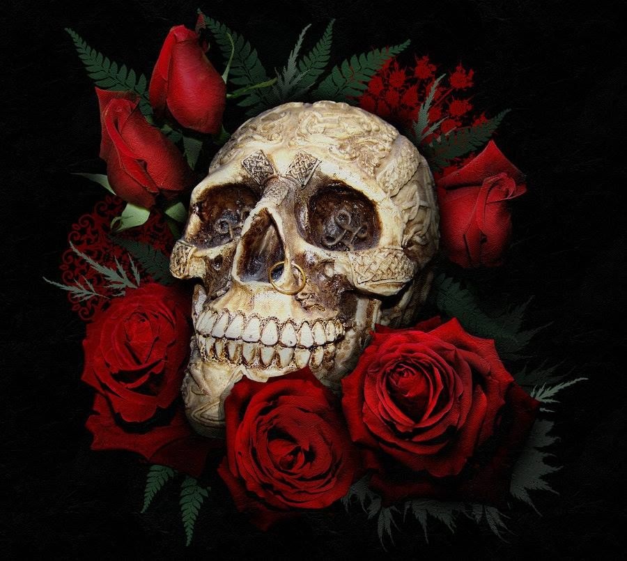 Death n roses skulls  GOOD SKULL  Pinterest