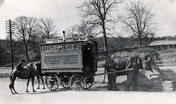 This Bostock wagon would have said '& Ferrari' before their split.
