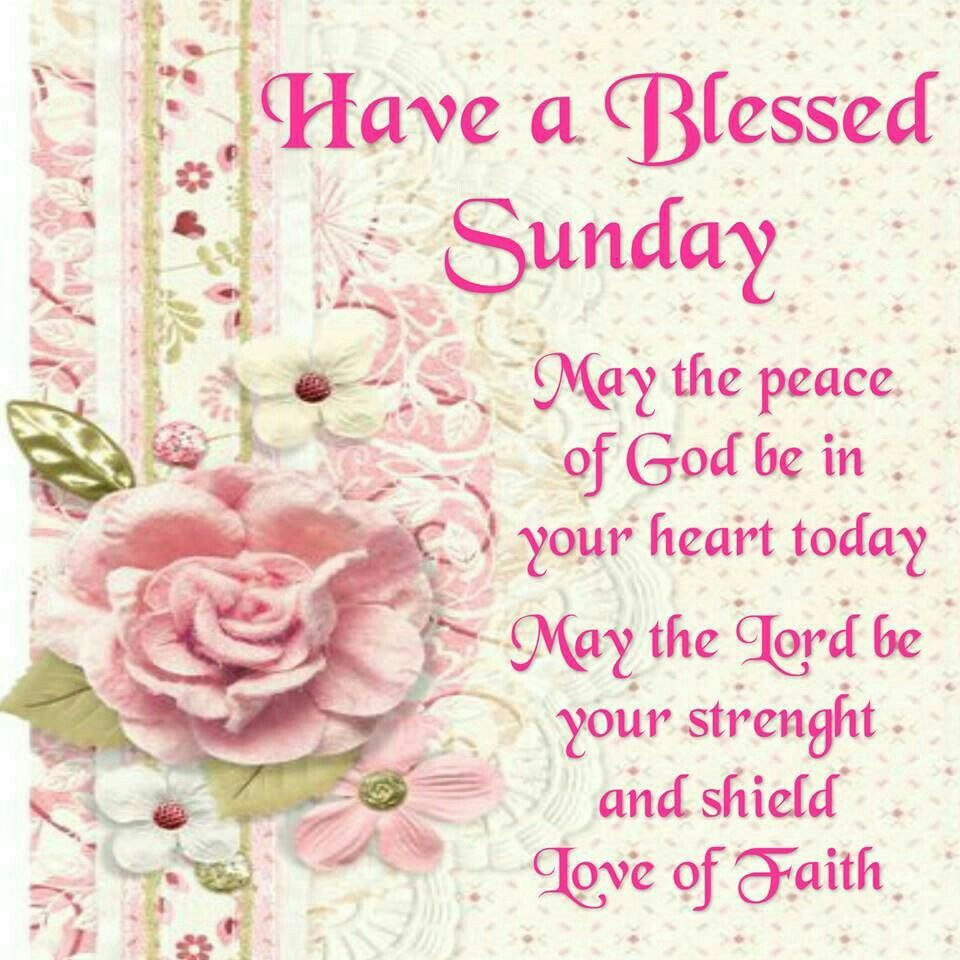 Sunday Blessings  Blessed sunday, Happy sunday quotes, Have a