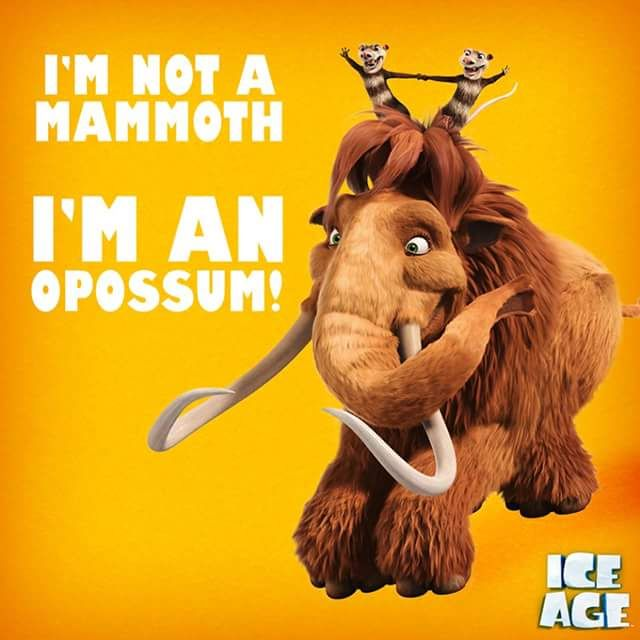 Ice Age Ellie Google Search Ice Age Ice Age Movies