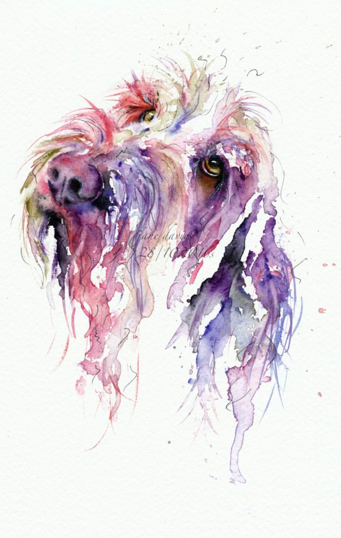 Pin By Deborah Borgo On Painting Watercolor Dog Watercolor Pet