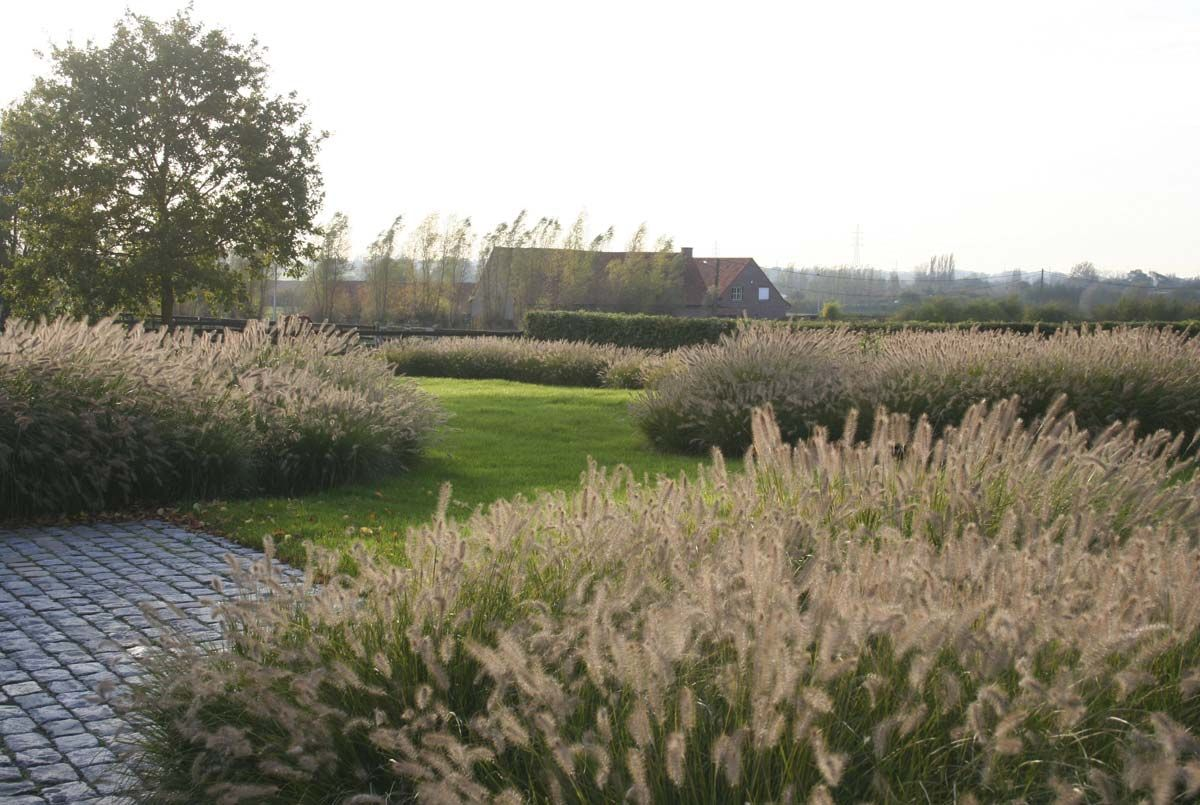 Natural garden landscape  Cobble  Filip Van Damme  ogrody  Pinterest  Van damme