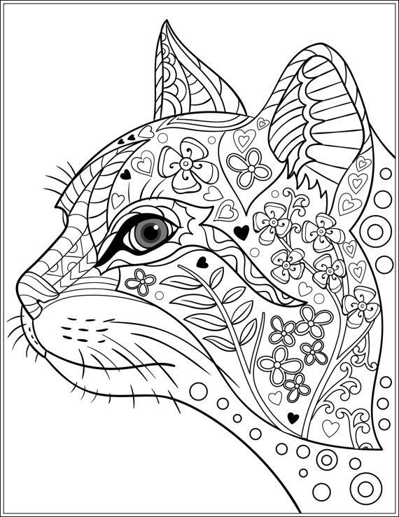 - Cat Coloring Pages For Adults Cat Coloring Book, Cat Coloring Page,  Abstract Coloring Pages
