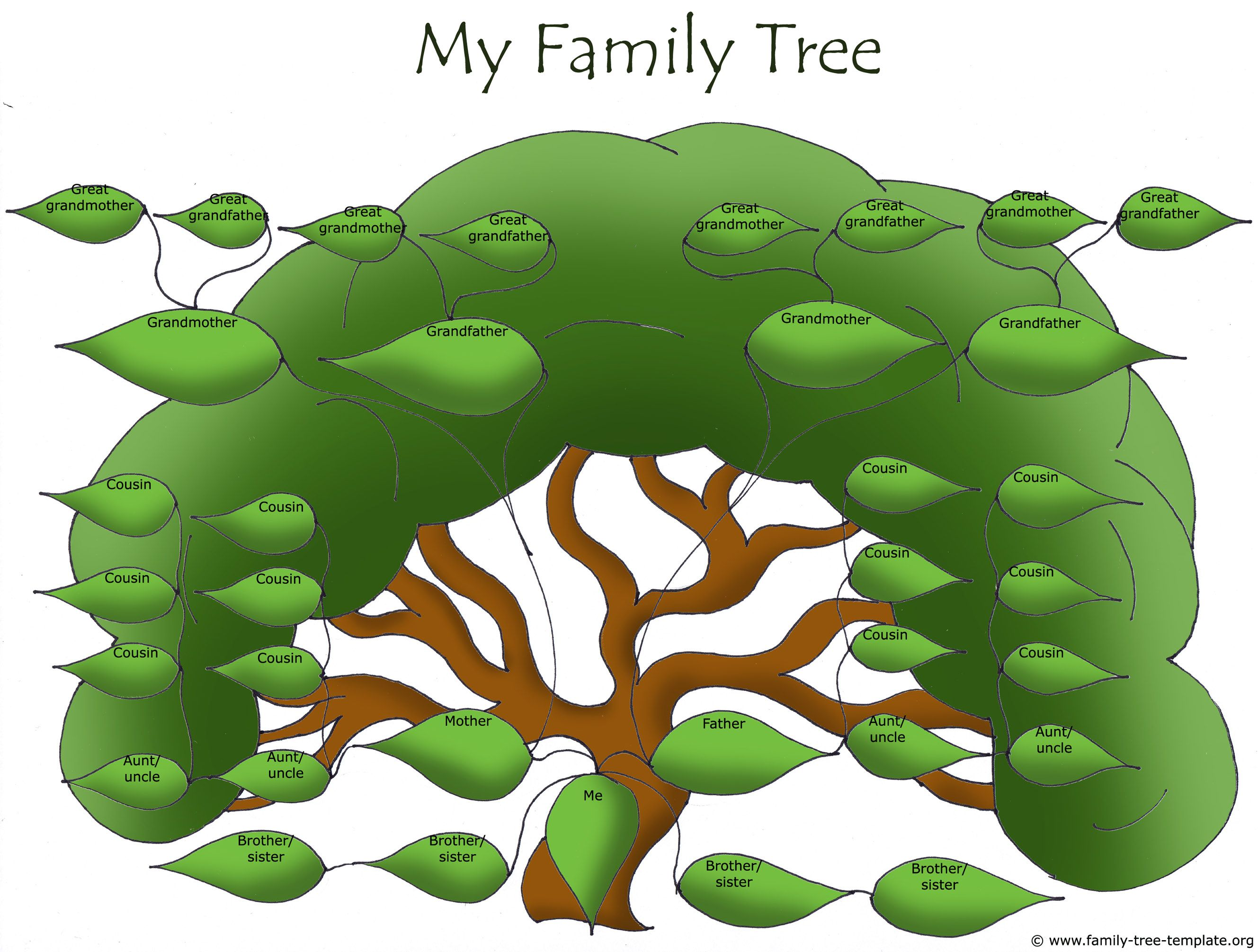 huge family tree for extended family life book family tree