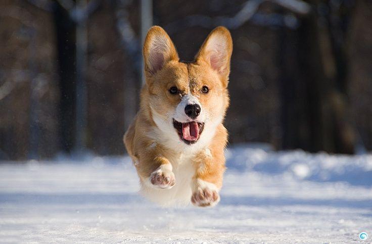 Dun da da da! Here I come!
