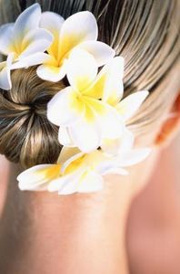 How To Make Plumeria Flower Clips Ehow Hawaiian Flower Hair Hair Flower Tutorial Flowers In Hair