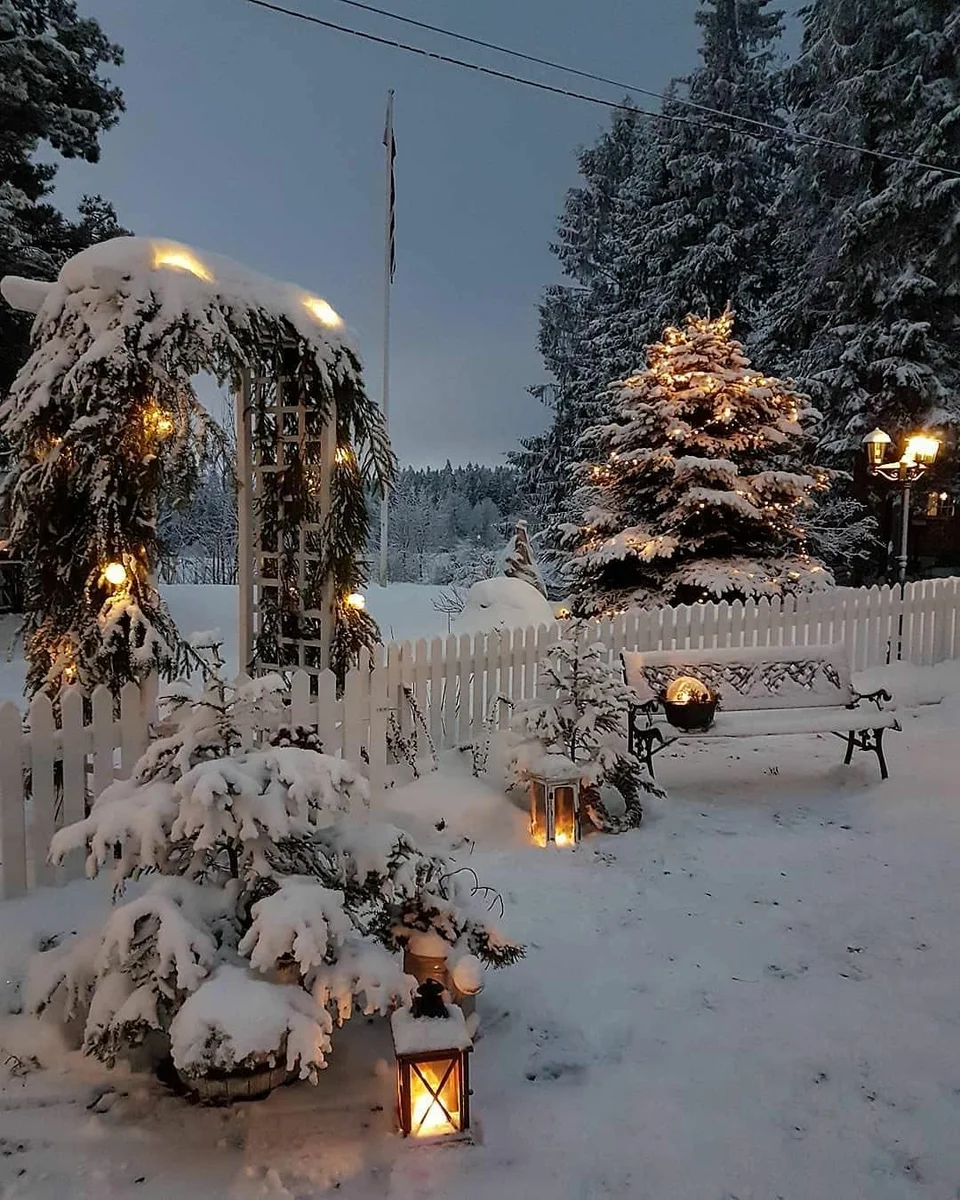Photo of How to decorate the garden in winter?