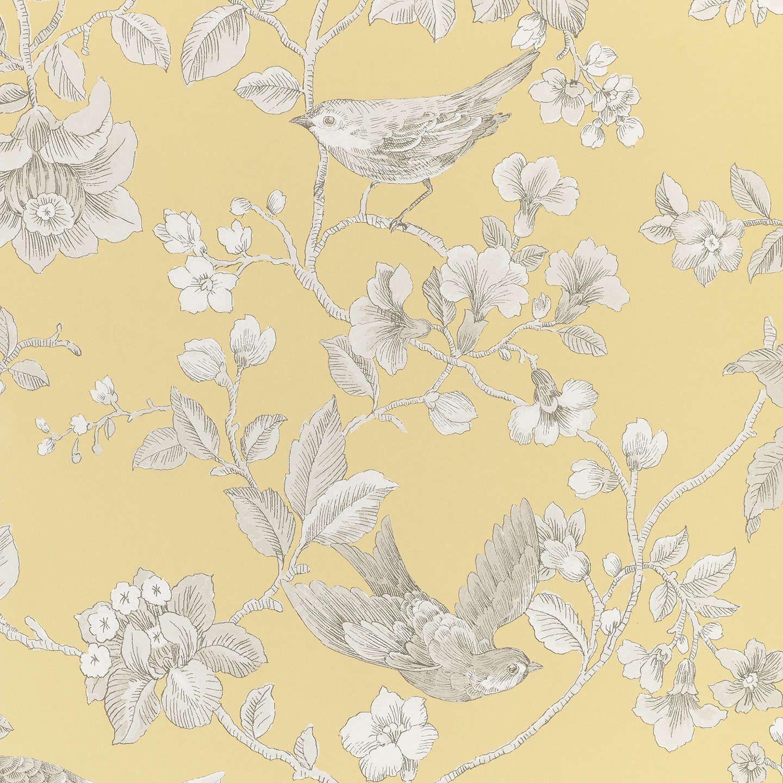 John Lewis Partners Nightingales Wallpaper Yellow John Lewis Wallpaper Yellow Wallpaper Wallpaper