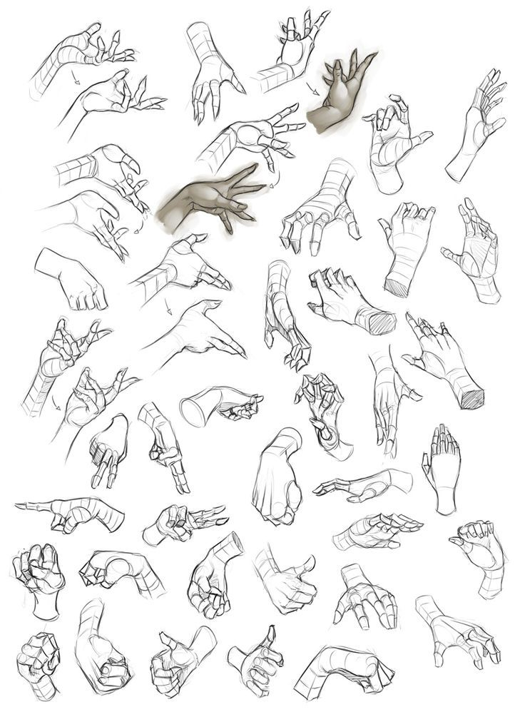 Female hand study 1 by dhex on deviantart https www facebook com characterdesignreferences