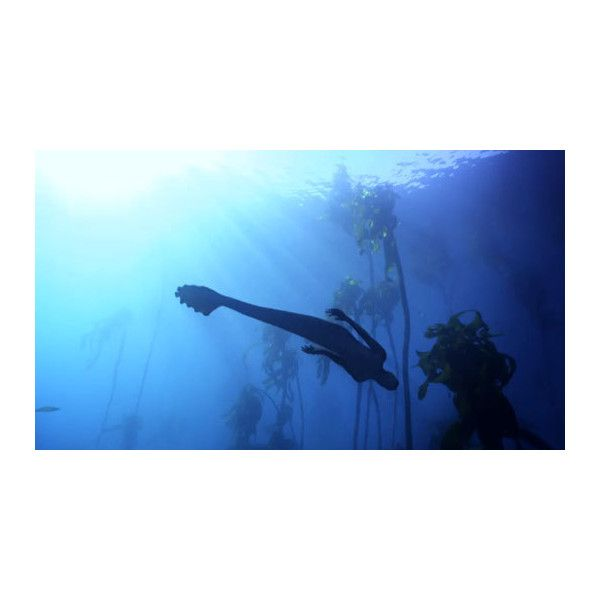 Awful Tv Mermaids On The Discovery Channel Liked On Polyvore