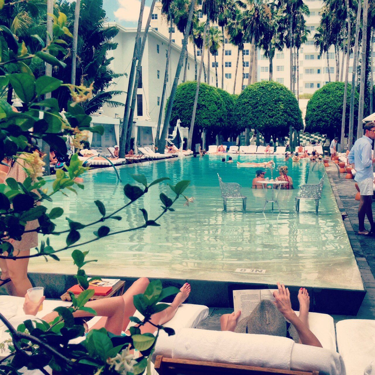 Delano   South Beach; we have to visit the bar here!