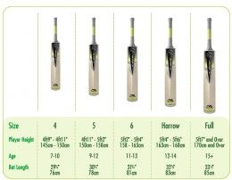 How To Choose The Right Cricket Bat And Save Money Cricket Bat Cricket Tips Cricket