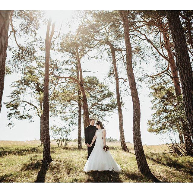 #couple #wedding #bride #groom #sun