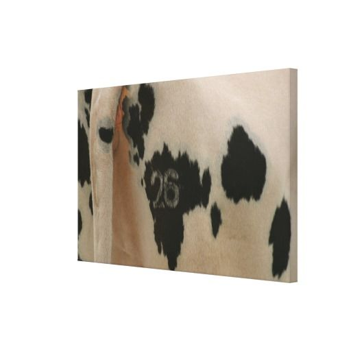 >>>The best place          Branded cow gallery wrapped canvas           Branded cow gallery wrapped canvas we are given they also recommend where is the best to buyHow to          Branded cow gallery wrapped canvas today easy to Shops & Purchase Online - transferred directly secure and trus...Cleck Hot Deals >>> http://www.zazzle.com/branded_cow_gallery_wrapped_canvas-192934582153401460?rf=238627982471231924&zbar=1&tc=terrest
