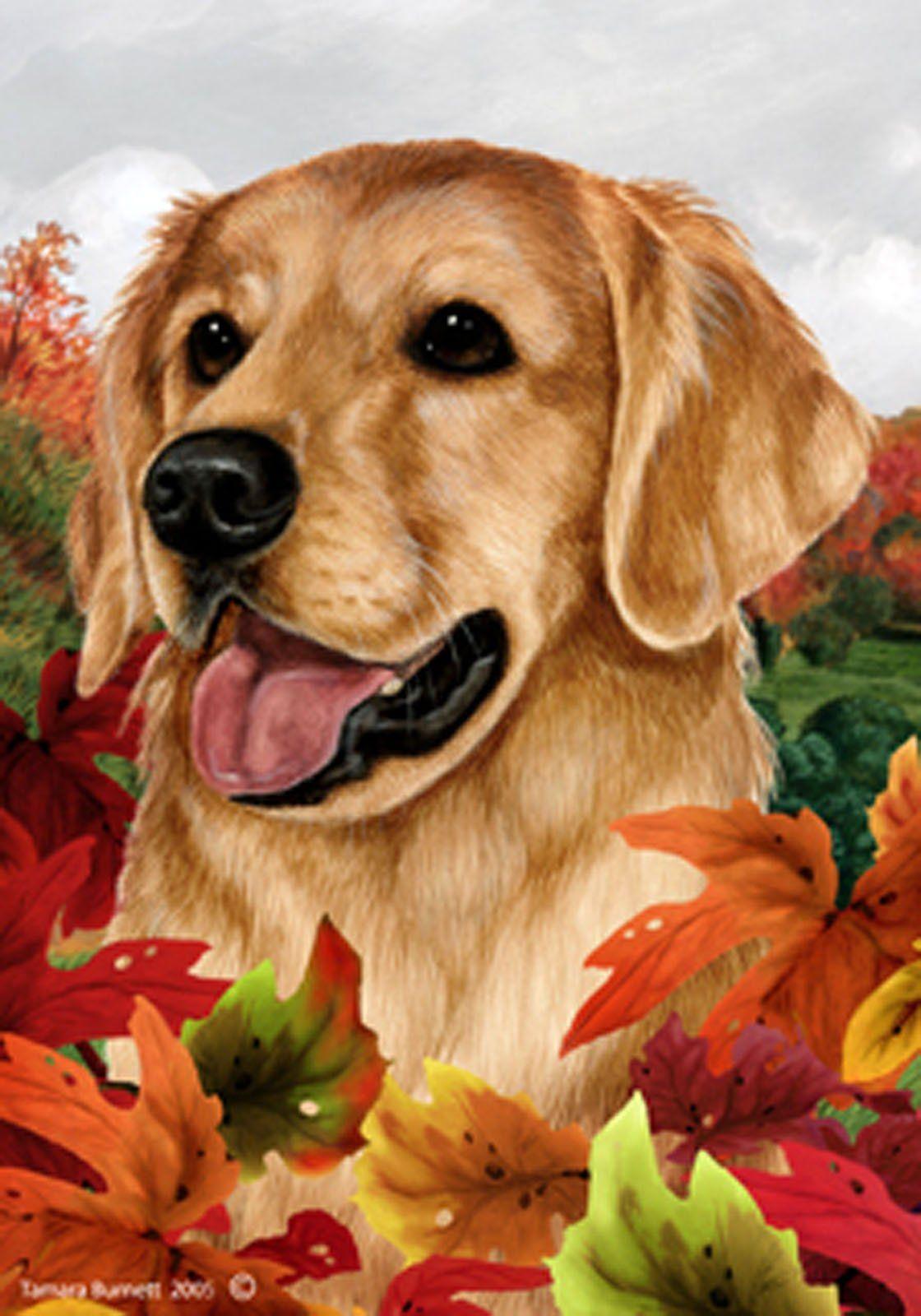 Best of Breed Garden Flag GOLDEN RETRIEVER Fall Leaves by
