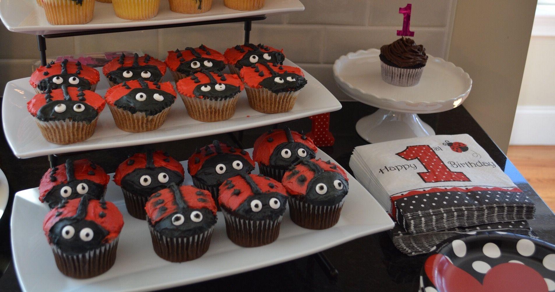 Ladybug 1st Birthday Party