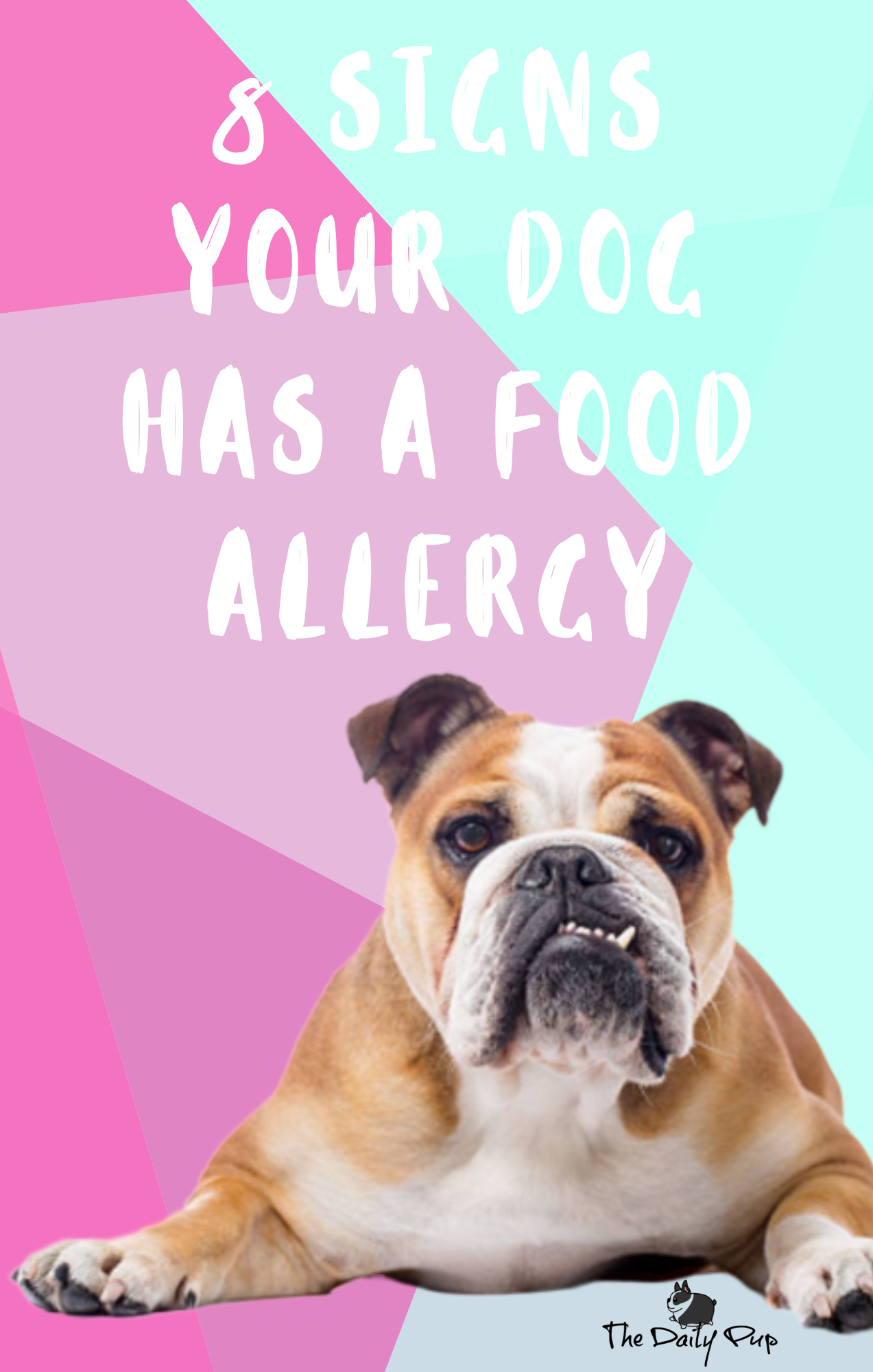 8 Signs Your Dog Has A Food Allergy What To Do About It In 2020 Dog Food Allergies Dog Allergies Hypoallergenic Dog Food