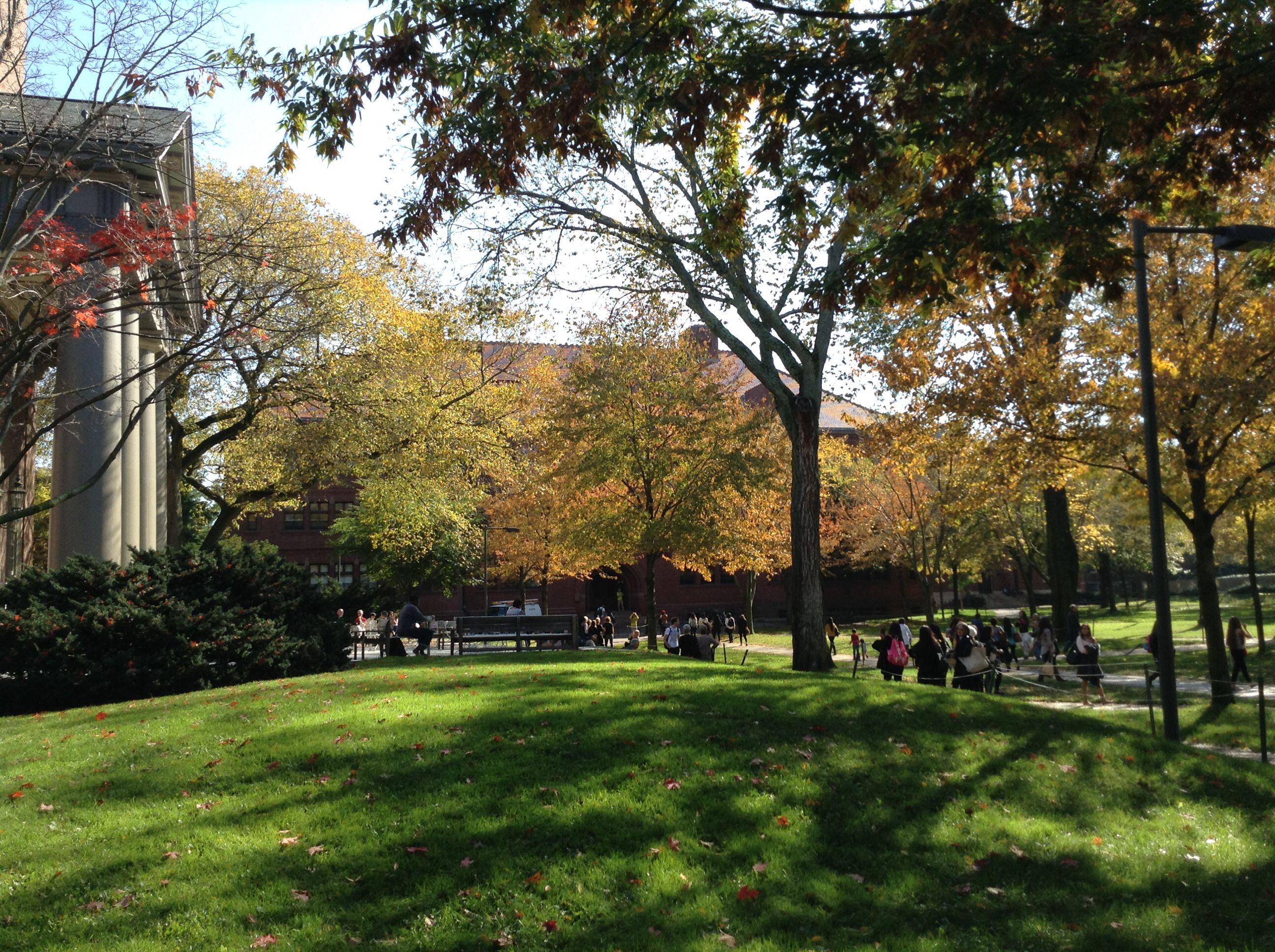 #Yale #fall