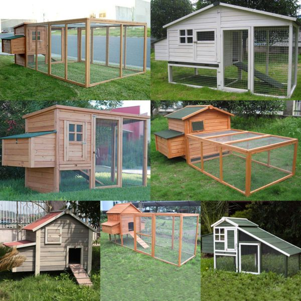 Wide Range Of Chicken Coop Available Form 138 Pet Products Gumtree Australia Greater Dandenong Dandenong South 10 Chicken Coop Coop Gumtree Australia